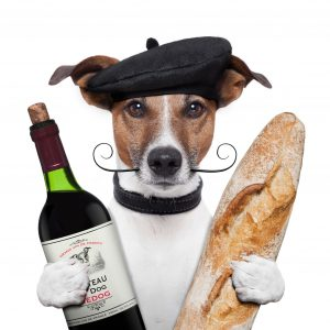 french-dog